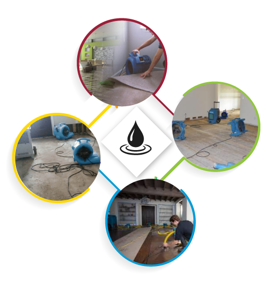 Professional Flood Damage Restoration Hobart
